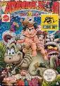 Adventure Island II NES Game